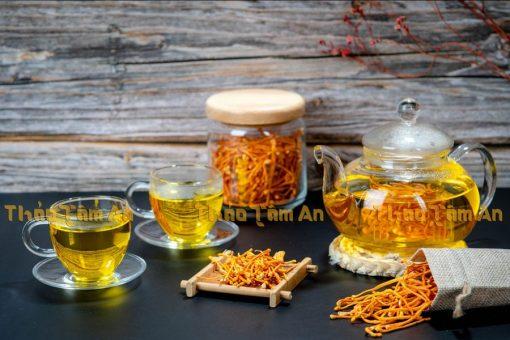 Dùng Nấm Đông Trùng Khô pha trà