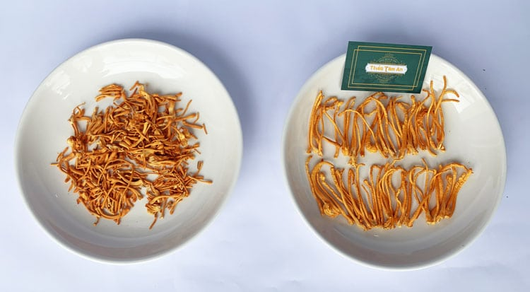 Sự khác biệt về độ lớn, đồng đều, độ gãy vụn của nấm khô