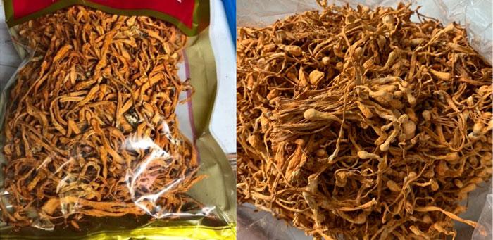 Đông Trùng Hạ Thảo khô bị rút hết dược chất, sấy nhiệt, giá rẻ