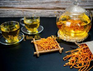Nước Đông Trùng Hạ Thảo dạng trà bổ dưỡng và tiết kiệm chi phí