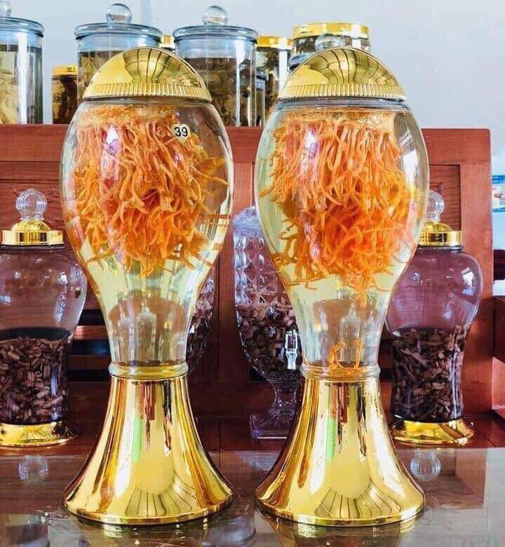 Bình Rượu Đông Trùng Hạ Thảo 500ml - 1l