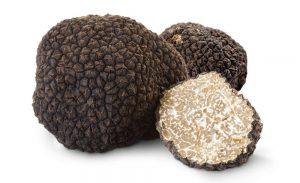 Nấm Truffle - Nấm đắt nhất thế giới được nhiều người biết